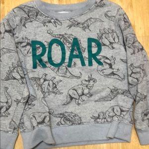 Little boys dinosaur sweatshirt